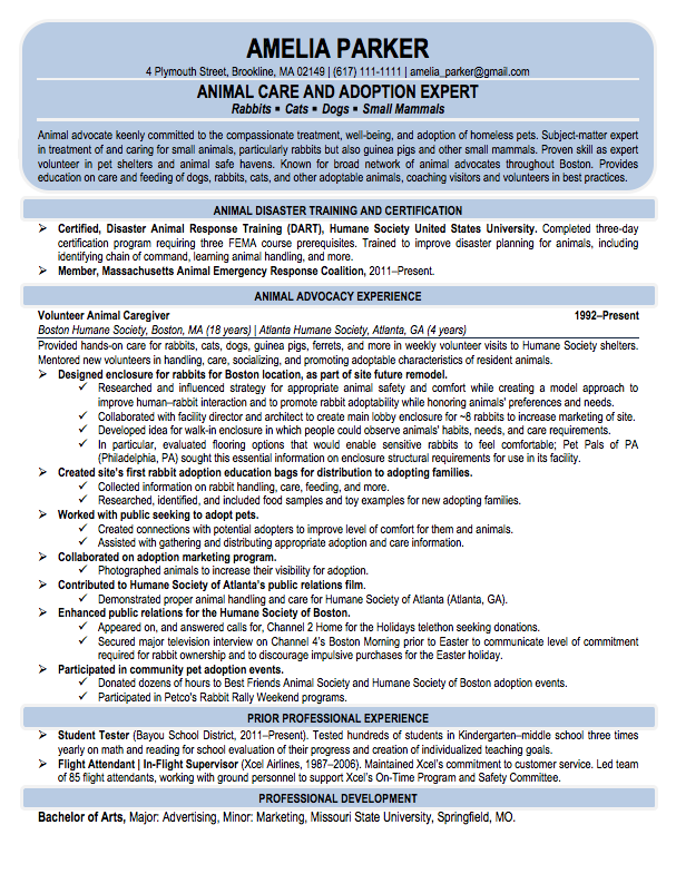 Career Re-Entry Professional Resume